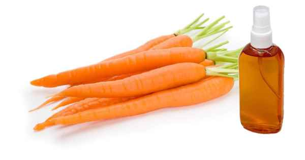 aceite de zanahoria propiedades y beneficios