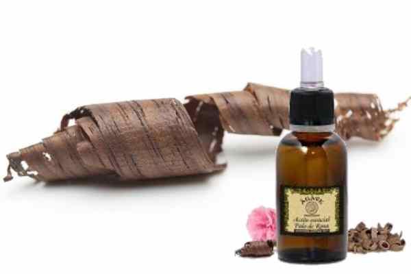 aceite esencial palo rosa