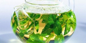 Herbs for weight loss burn fat