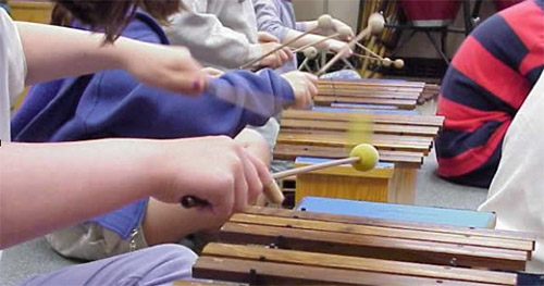 ACEMM's Mobile Ensemble's are instruments on loan to active music and movement educators to augment and extend the experiences they are offering to their students.