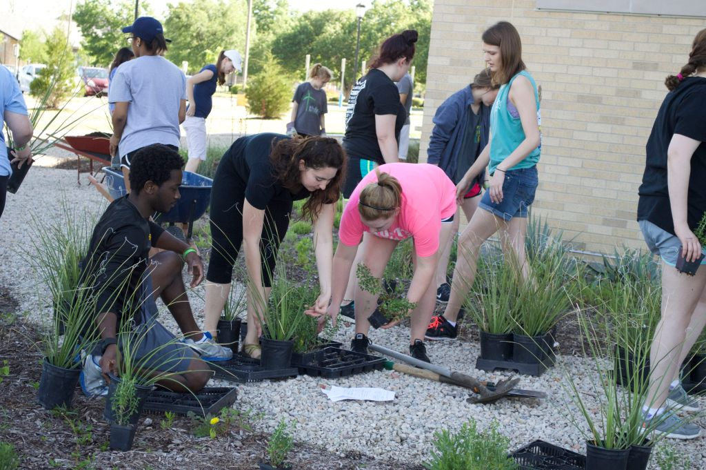 Volunteers prepare to plant their section of plants at GreenServe.