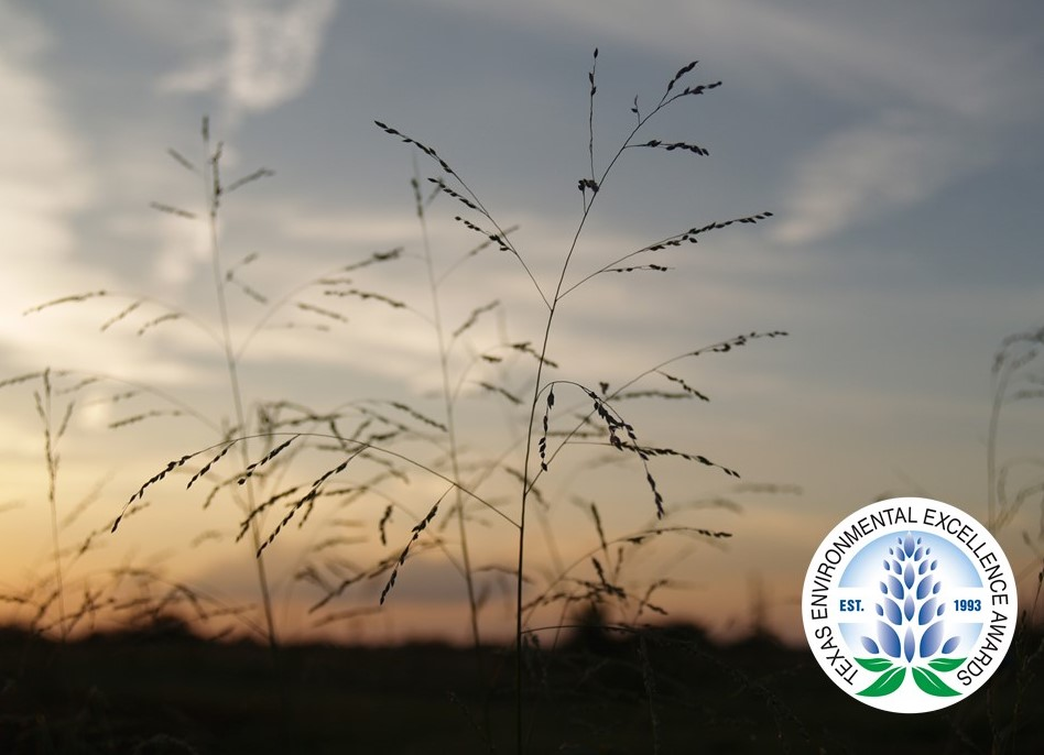 Sneed Prairie Restoration awarded 2020 Texas Environmental Excellence Award by TCEQ