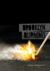 Cover of Brooklyn, Burning by Steve Brezenoff