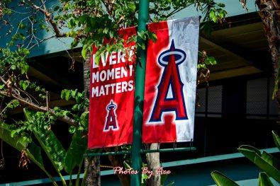 Yankees vs Angels -2