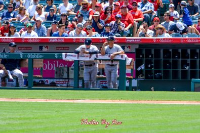 Yankees vs Angels -51