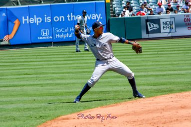 Yankees vs Angels -81