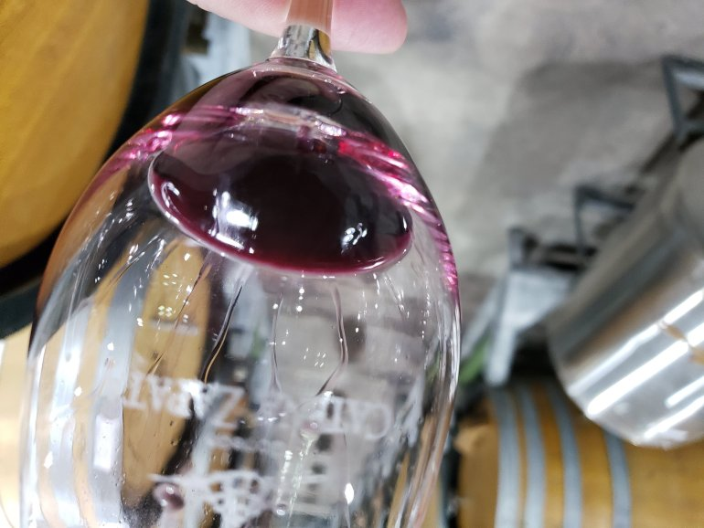Catena Institute of Wine, la NASA de los vinos 14