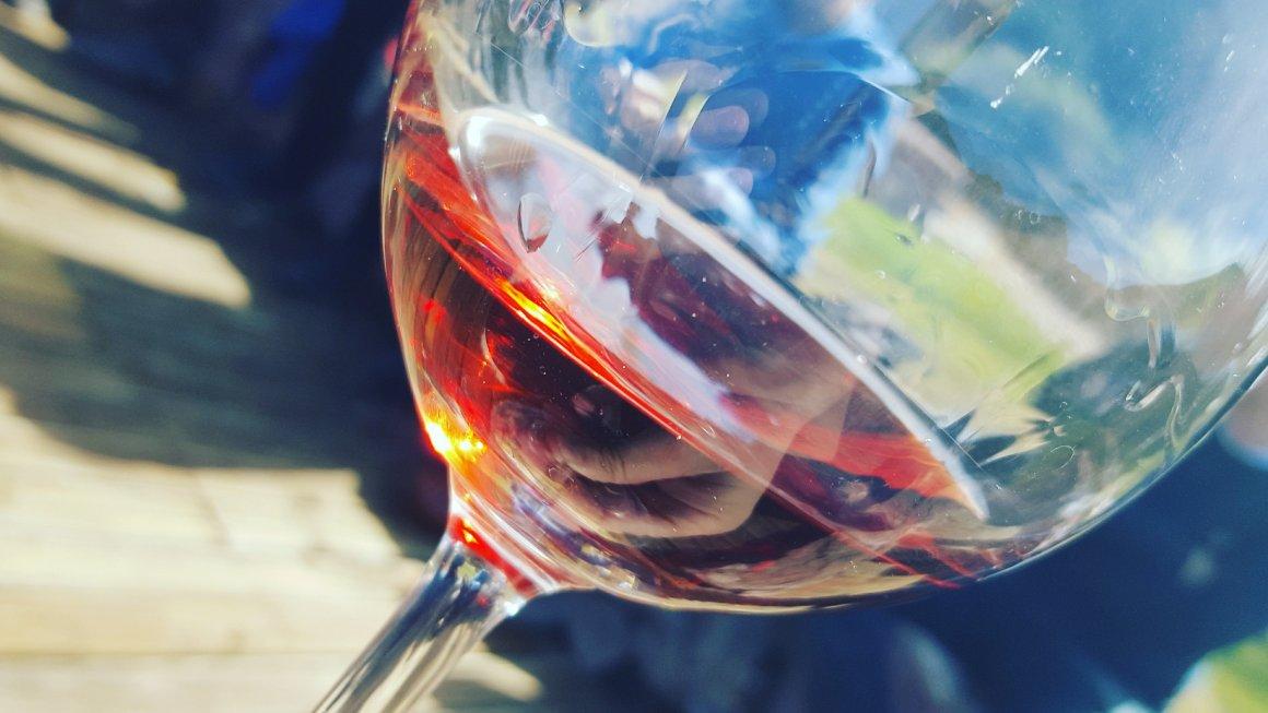 Para disfrutar del vino no hace falta saber de vinos 2