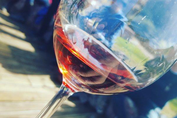 """Para disfrutar del vino no hace falta """"saber"""" de vinos"""
