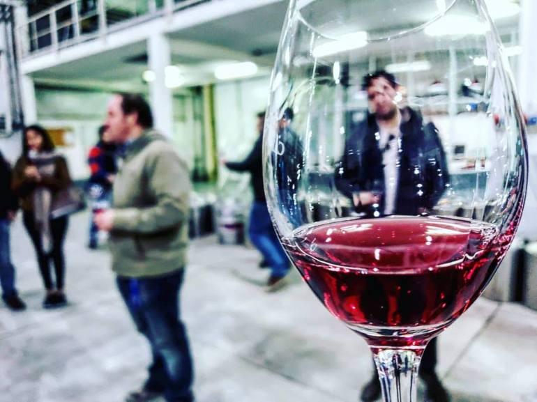 Catena Institute of Wine