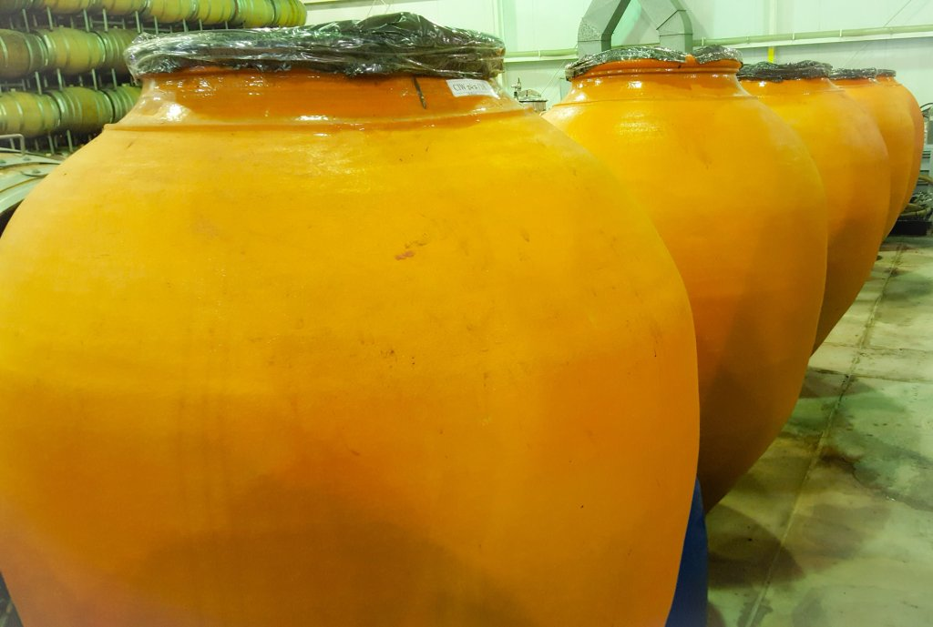 Catena Institute of Wine, la NASA de los vinos 6