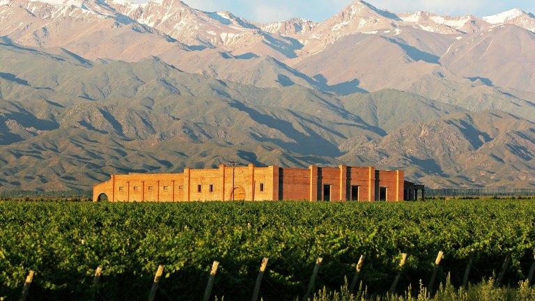 Momentos Andeluna: Atardecer entre viñedos y la cordillera 2