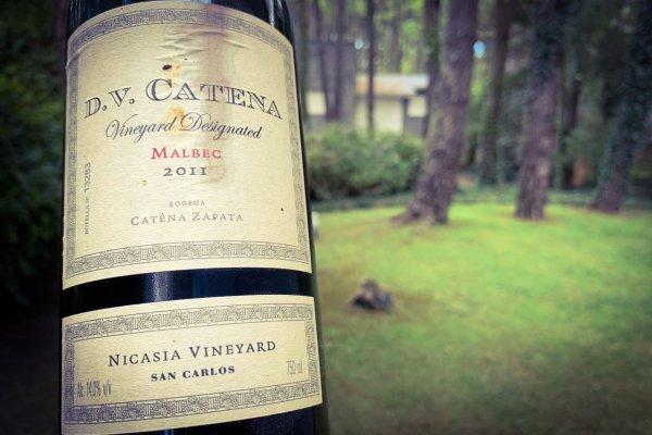 Como Dios Manda: DV Catena Vineyard Designated Nicasia Malbec 2011