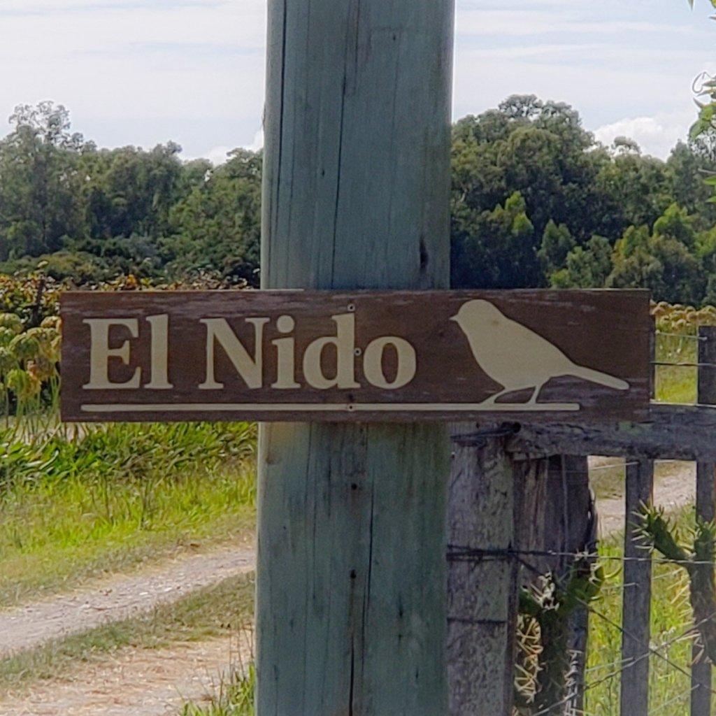 El Nido Treehouses