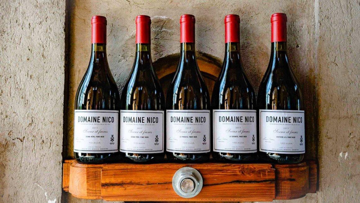 Domaine Nico, el sueño francés de Laura Catena 2
