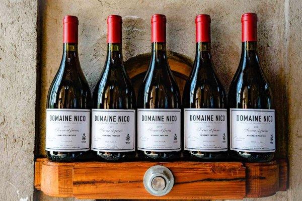 Domaine Nico, el sueño francés de Laura Catena