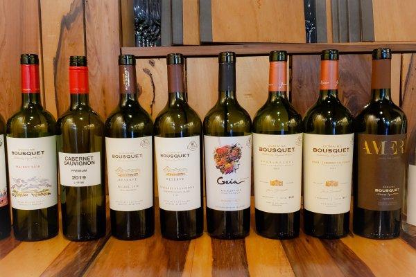 Domaine Bousquet y la búsqueda de vinos orgánicos elegantes