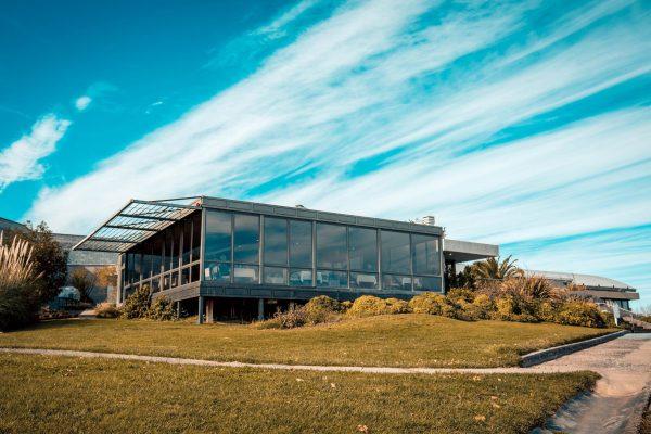 Enoturismo: Viví la Patagonia entre viñedos