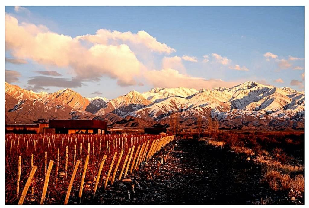 Nieve en los viñedos - Bodega Corazón del Sol - Los Chacayes (Foto: Cristian Moor)