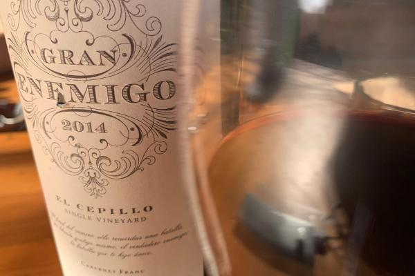 Gran Enemigo Single Vineyard El Cepillo Cabernet Franc