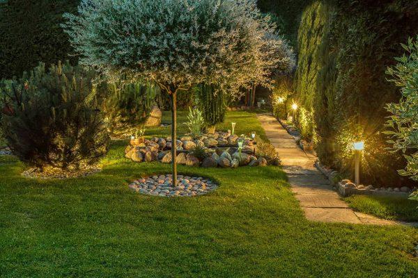 Oświetlenie solarne w projektowaniu ogrodów