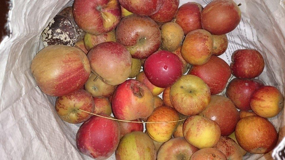 Appels wachten op verwerking