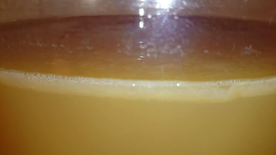 Azijnmoeder in de fles, foto2