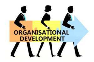 Free Online Introduction Course to Organisational Development