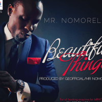 Mr. Nomoreloss - BEAUTIFUL THINGS