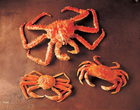Raw Alaska Crab