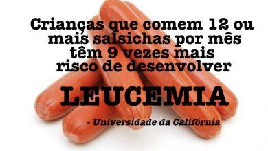 Photo of Estudo revela que salsicha aumenta riscos de câncer e leucemia em crianças