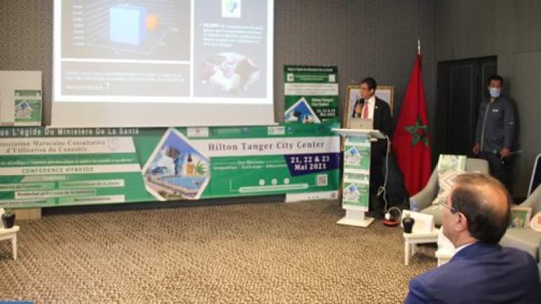 طنجة: مؤتمر استخدام مشتقات القنب الهندي يبحث ربط البحث العلمي بالصناعة الصيدلية