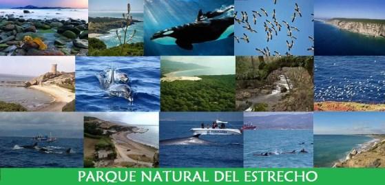 Algésiras acheter immobilier en Espagne Parque natural del Estrecho