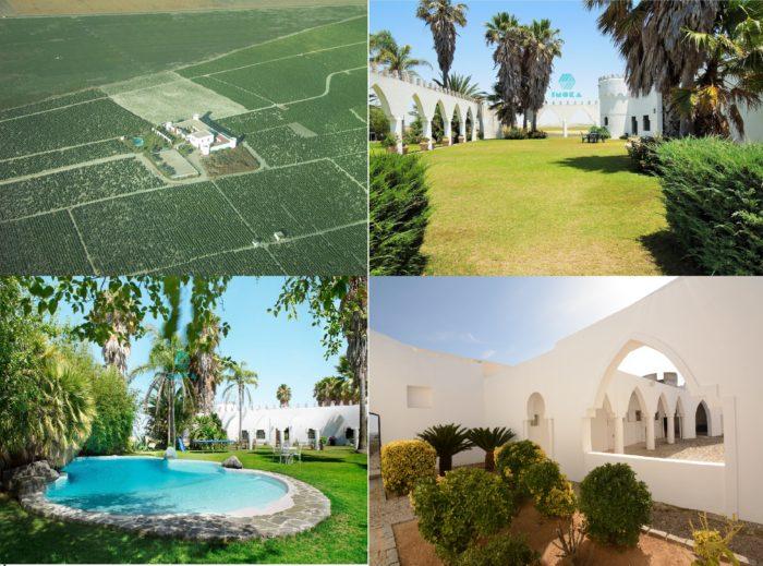 Cortijo vignoble acheter immobilier en Espagne 1
