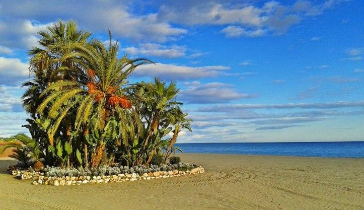 Estepona playa de la rada acheter immobilier en Espagne 2