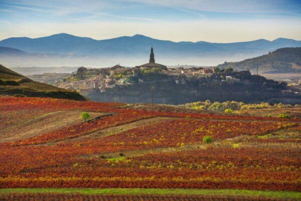 Briones La Rioja acheter immobilier en Espagne