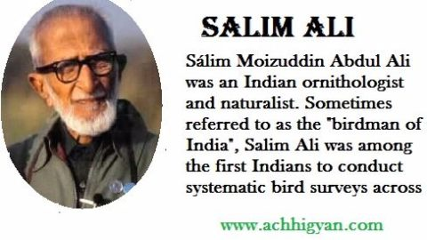 सालिम अली की जीवनी | Salim Ali Biography In Hindi
