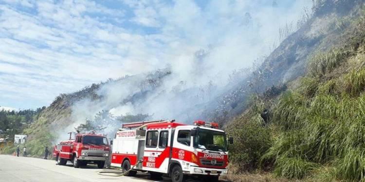 Incendio forestales