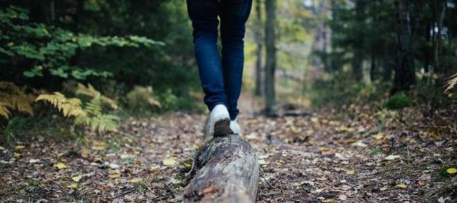 forest-walk-public-domain