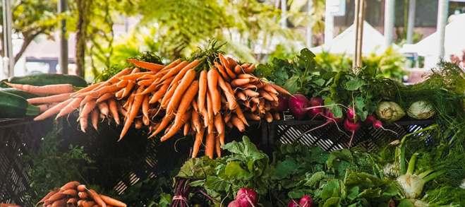 radish-and-carrots-1656663