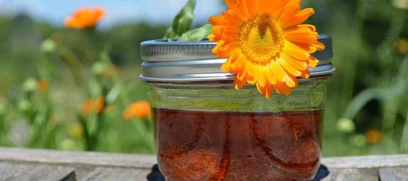kimberly konkel calendula oil