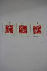 Blutbilder (mittel) © Ramona Taterra
