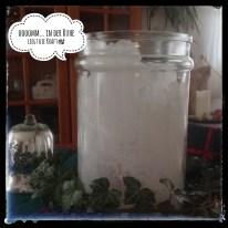 Nach einer Woche war die Innenwand fast vollständig mit Salzkristallen zugewachsen