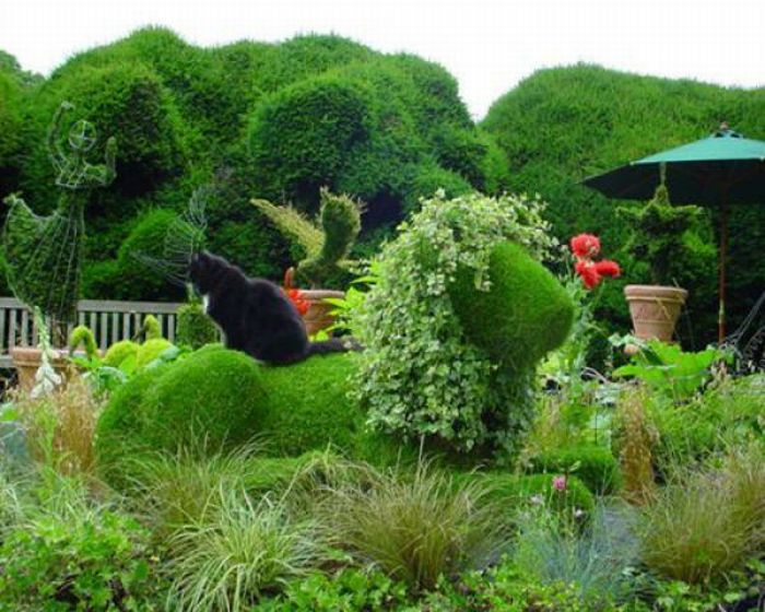 Beautiful Garden (35 pics)