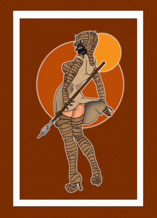How  Do You Like Your Star Wars Pin Ups? (9 pics)