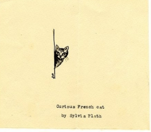 Curious French Cat, 1956 (pen & ink on paper)