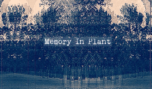 Memory In Plant: Shame On Me  [New Sounds]
