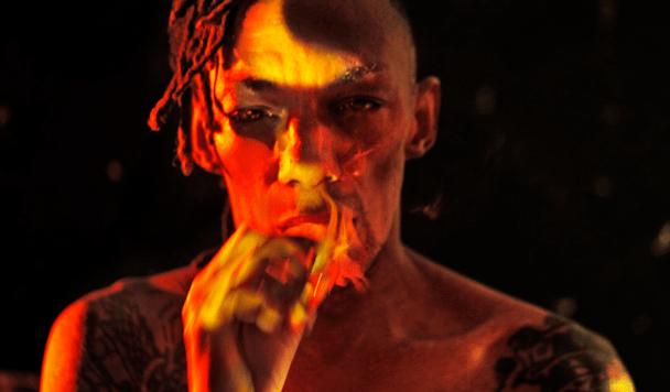 Tricky - Adrian Shaw [Album Review] - acid stag