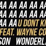 Alison Wonderland - U Don't Know (ft. Wayne Coyne) [New Single] - acid stag