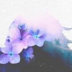 Ferraz - So Delirious (ft. Alissa Maria) - acid stag